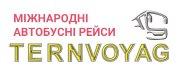 Ternvoyage logo