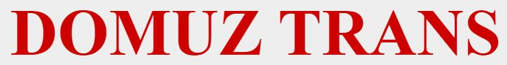 PTP Domuz-Trans logo