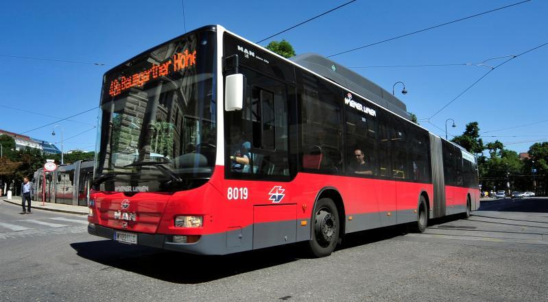 Tunesier zuckt im Bus aus