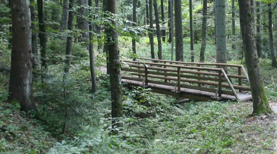 Pješačka i biciklistička staza u nacionalnom parku