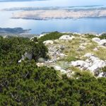 Nationaal-Park-Velebit