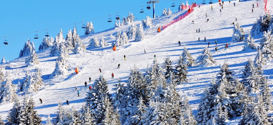 Slopes of winter resort with trees