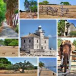Brijuni islands national park nature view collage, Istria, Croatia