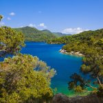 Lake at island Mljet in Croatia - nature background
