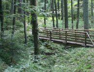 trail-national-park-kozara
