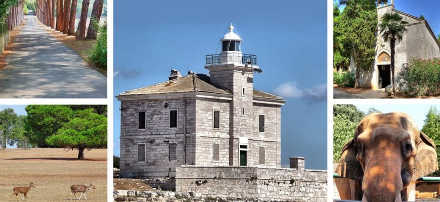 Brijuni islands national park nature view collage, Istria, Croatia