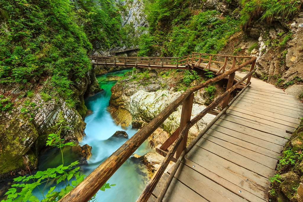 The famous Vintgar Canyon and green river,Bled,Triglav,Slovenia,Europe