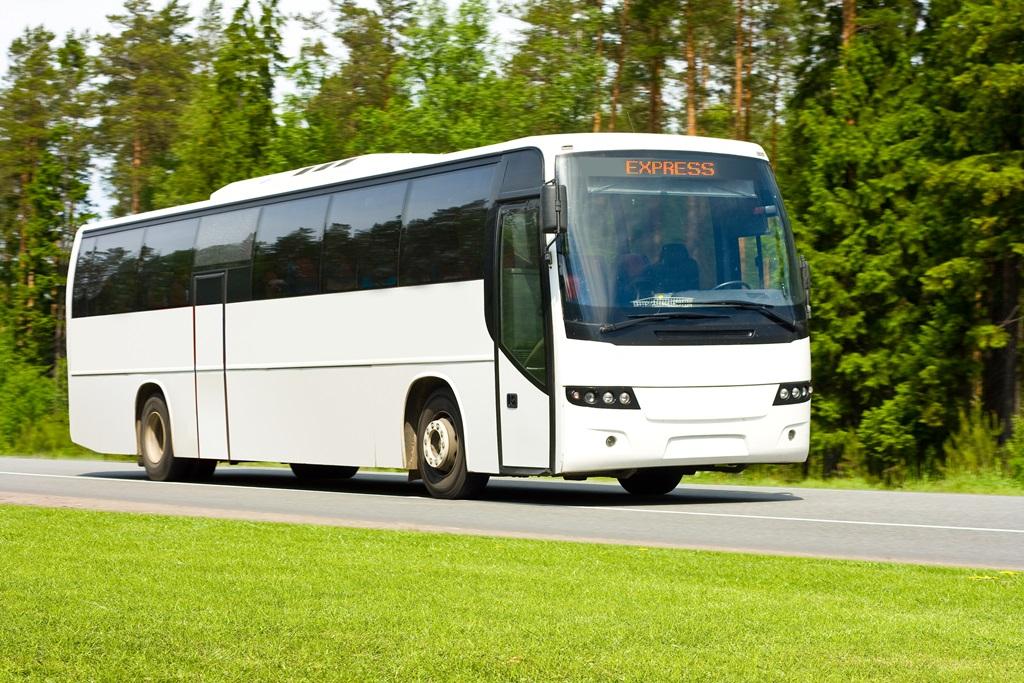 Bussen naar Wicklow Mountains nationaal park