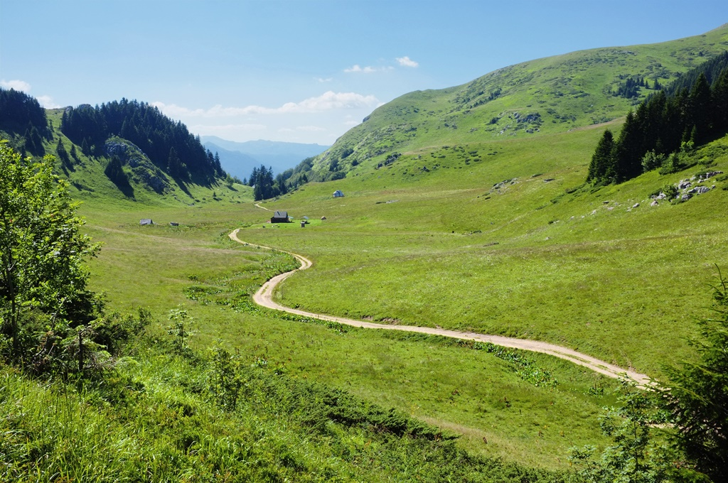 "sinuous trail along Dolovi Lalevica in ""Biogradska Gora"" National Park, Montenegro"
