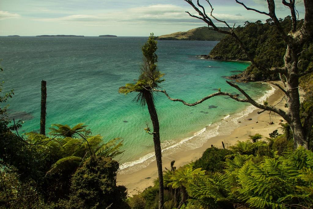Stewart island, Rakiura National Park