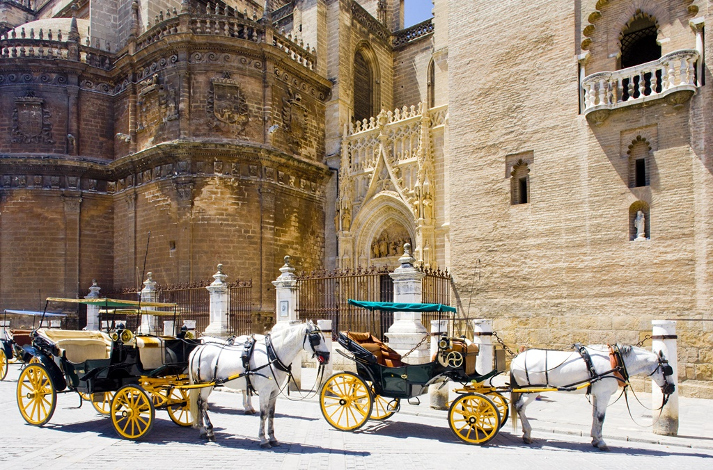 Carriages in front of Cathedral of Seville