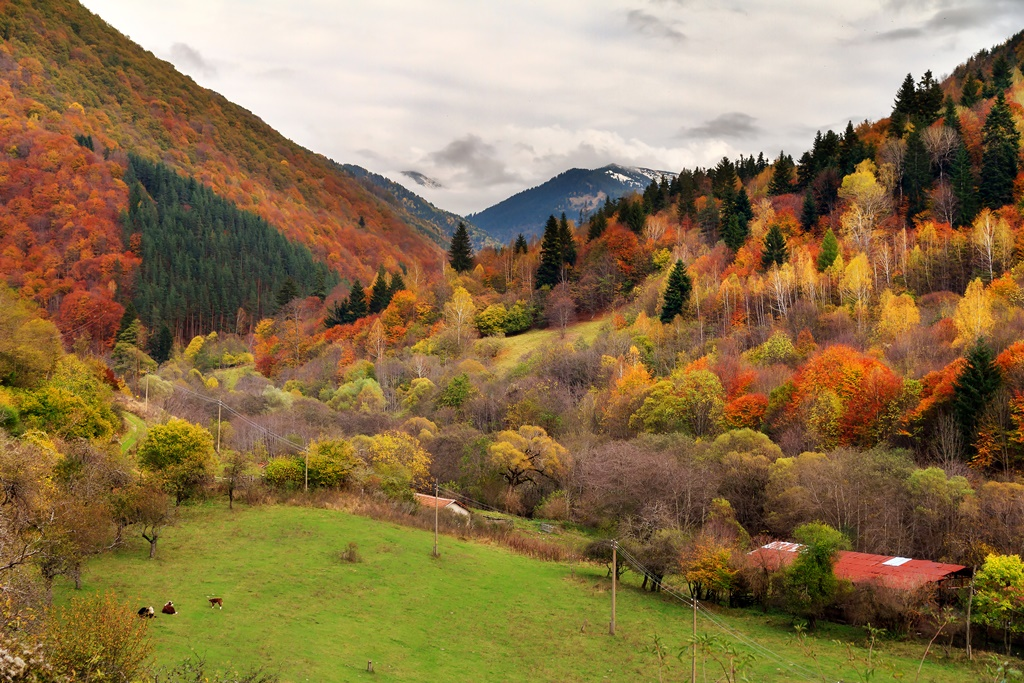 National parks in Europe, NP Rila