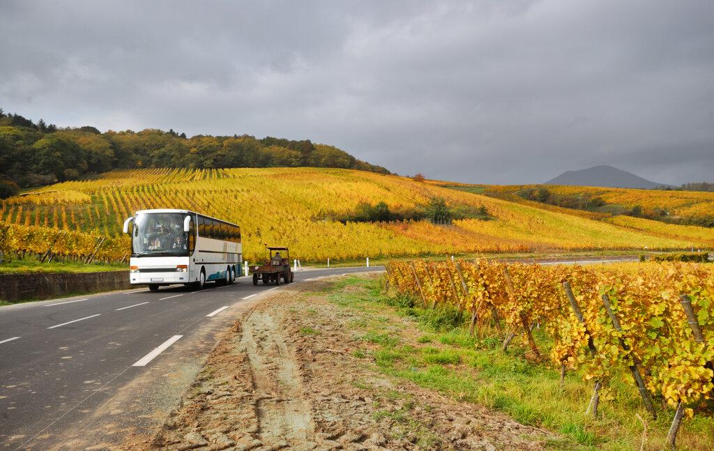 Bus France