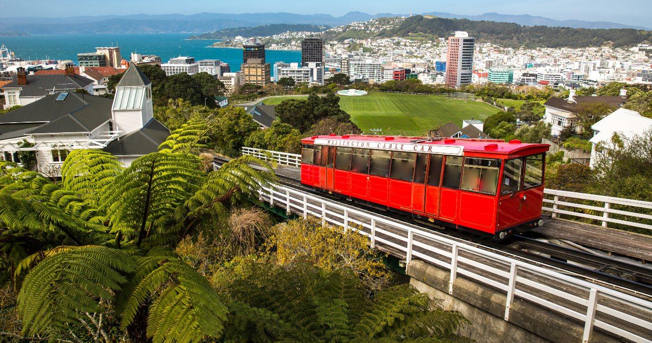 New Zealand bus