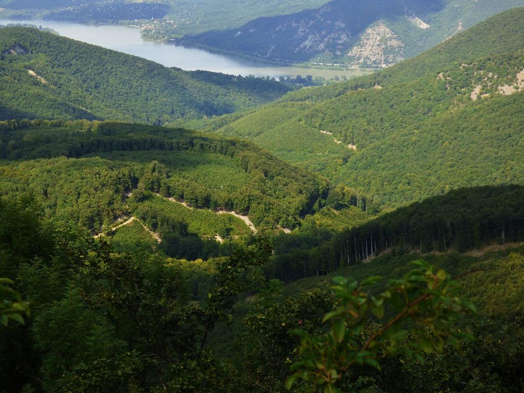 Danube-Drava National Park